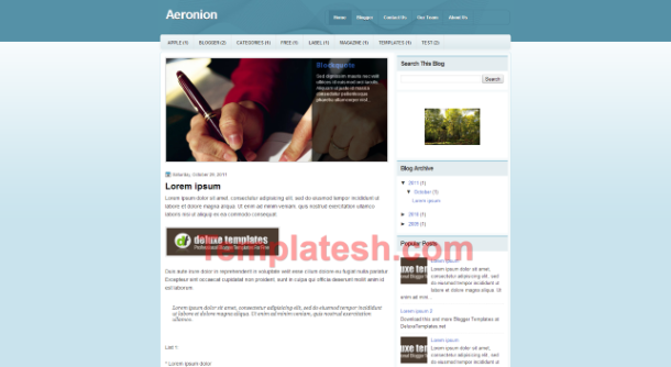 aeronion blogger template