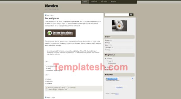Blastica