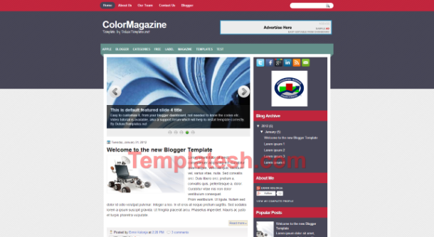 color magazine blogger template