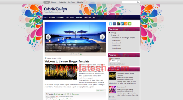 ColoriteDesign