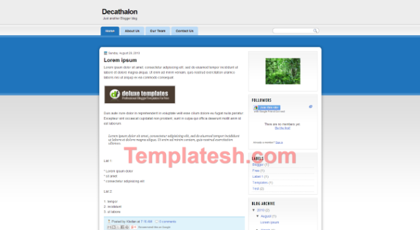 decathalon blogger template