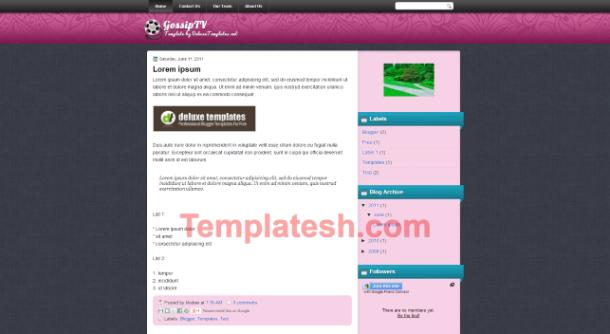 gossip tv blogger template