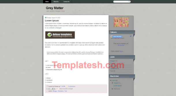 grey matter blogger template