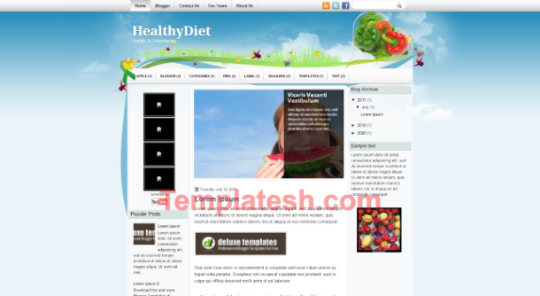 healthy diet blogger template