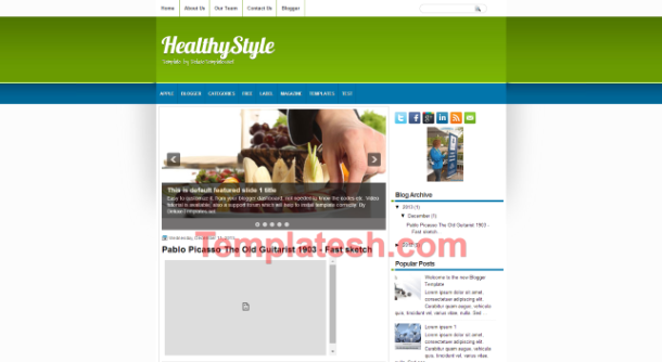 healthy style blogger template