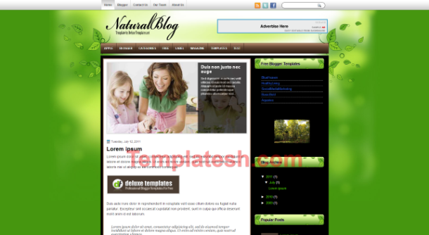 natural blog blogger template