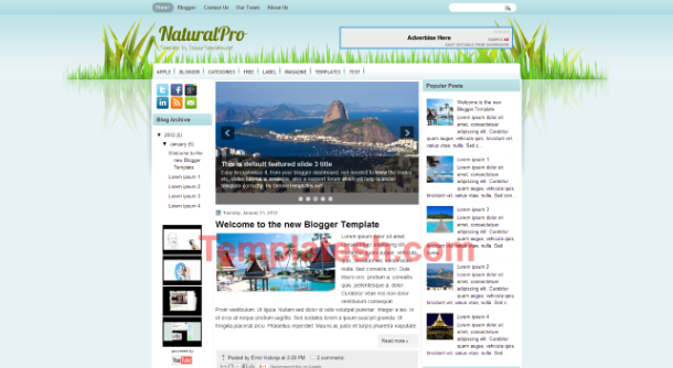 natural pro blogger template