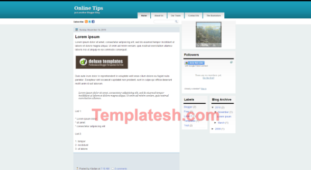 online tips blogger template