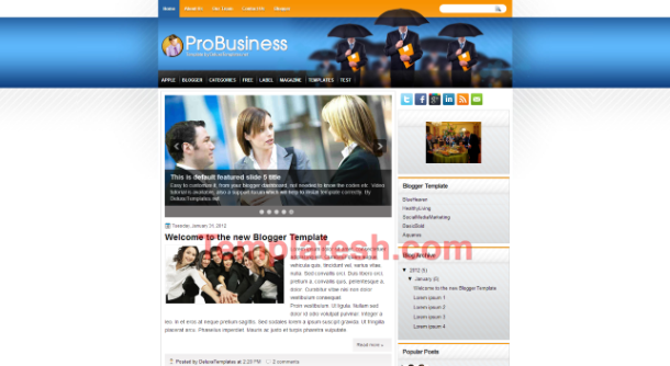 Probusiness blogger template templatesh for Pro photo blog templates