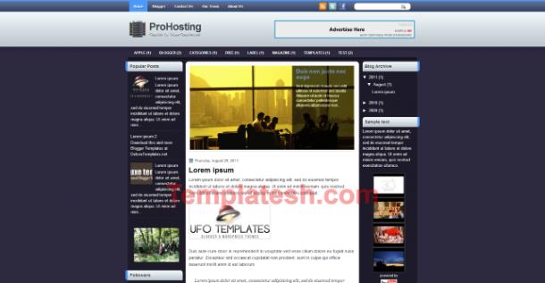 pro hosting blogger template