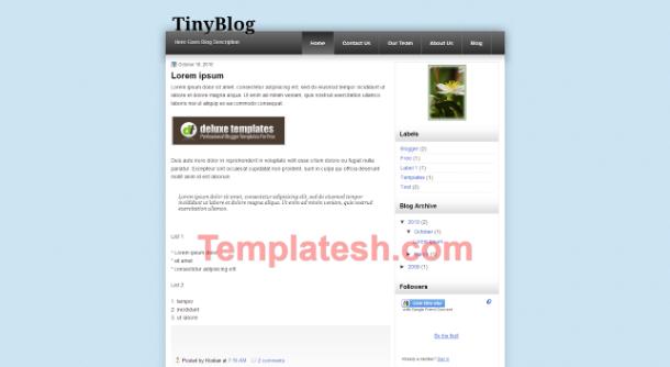 tiny blog blogger template