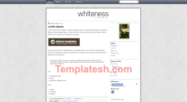 whiteness blogger template